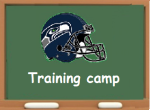 Training camp logo2